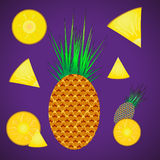 Pineapple set fruit and pieces Royalty Free Stock Photos