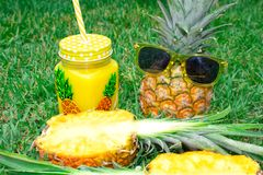 Pineapple set. Pineapple in sunglasses, a mug with juice and one pineapple in a cut, on a background of green grass. stock images