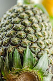 Pineapple shot from bottom. A shot of pineapple from the bottom stock photo