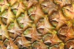 Pineapple skin texture closeup.Pineapple texture. royalty free stock photo