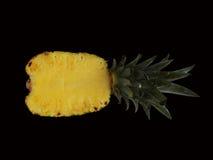 Pineapple slice Stock Image
