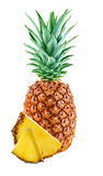 Pineapple with slices isolated Royalty Free Stock Photo
