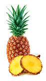 Pineapple with slices isolated Stock Photography