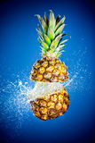 Pineapple splashed with water Stock Image