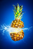 Pineapple splashed with water Stock Photography