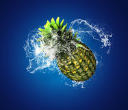 Pineapple Splashes Stock Image