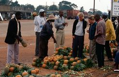 A pineapple stall in Uganda Royalty Free Stock Photos