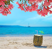 Pineapple with straw and umbrella under pink flowers Royalty Free Stock Photos