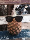 Pineapple with style. Everybody can have swag. This pineapple too Stock Photos