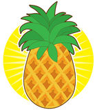 Pineapple Sun Royalty Free Stock Photo