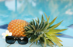 Pineapple with sun glasses and pool Royalty Free Stock Image