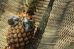 A pineapple with a sunglasses stock images