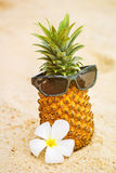 Pineapple in sunglasses on a seashore Royalty Free Stock Photos