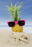 Pineapple with sunglasses and starfish Stock Images
