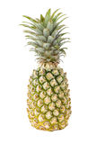 Pineapple. Sweet tropical friut, isolated pineapple Royalty Free Stock Photography
