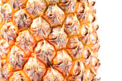 Pineapple texture Stock Images