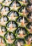 Pineapple texture Stock Image