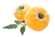 Pineapple tomatoes. In front of white background Royalty Free Stock Photo