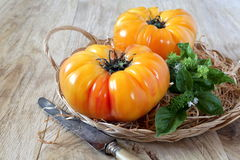 Pineapple tomatoes. Two pineapple tomatoes, basil and vintage knife stock photo