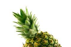 Pineapple Top Stock Photo