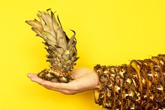 Pineapple top with leaves in hand and the rest of the skin royalty free stock photo