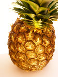Pineapple top view. One golden pineapple isolated on white background Royalty Free Stock Photos