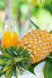 Pineapple tropic fruit summer refreshment smoothie Royalty Free Stock Photos
