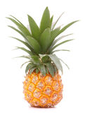 Pineapple tropical fruit or ananas stock photography
