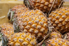 Pineapple. Tropical fruit or ananas in the market Stock Photo