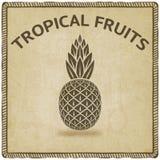 Pineapple tropical fruit symbol Stock Photos
