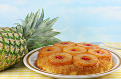 Pineapple Upside Down Cake. With a fresh whole pineapple to the side.  Blue sky background has copy space Stock Image