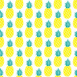 Pineapple vector background Royalty Free Stock Images
