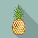 Pineapple vector file Stock Photos