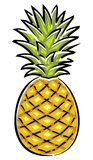 Pineapple Vector Illustration. Vector illustrations solated on white background - Pineapple Royalty Free Stock Photo