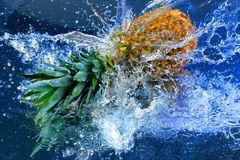 Pineapple in water Stock Photography