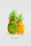 Pineapple  watercolor Stock Photos