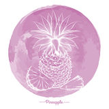 Pineapple on watercolor pink cirlce Royalty Free Stock Photo