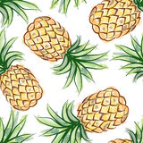 Pineapple watercolor seamless pattern. Exotic fruits background Royalty Free Stock Images