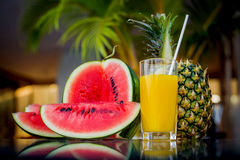 Pineapple and watermelon Royalty Free Stock Images