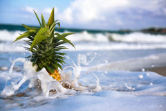Pineapple in waves of atlantic ocean Royalty Free Stock Photo