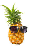 Pineapple wearing sunglasses - Summertime vacation holiday eatin Royalty Free Stock Images