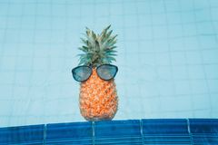 Pineapple wearing sunglasses in swimming pool, Summer and vacati Stock Photography