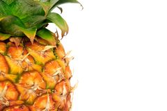 Pineapple on white. Detail of a pineapple against a white background with copy space to right stock photo