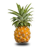 Pineapple on white. Stock Photo