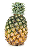 Pineapple. On white background Royalty Free Stock Image