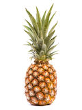 Pineapple on White Stock Image