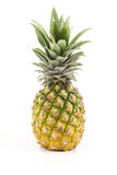 Pineapple. On the white background Stock Image