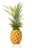 Pineapple on white isolate background. Royalty Free Stock Images