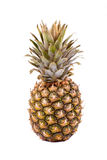 Pineapple on white Stock Photography