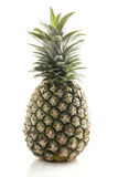 Pineapple. Whole ripe pineapple  on white background Stock Image